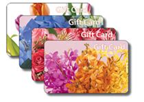 Mercury Cards And Gifts - ftdi com mercury technology gift card program