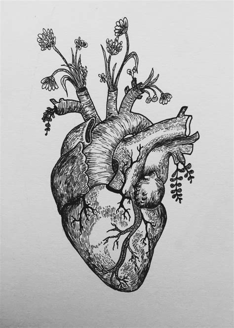 anatomical heart tattoo designs anatomically correct flash design e mail message me
