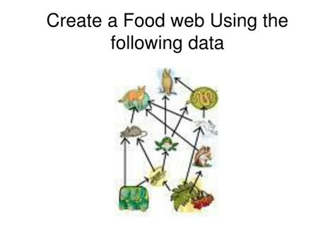 food web creator ppt owl pellet dissection powerpoint presentation id