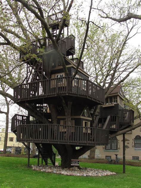 Cool Bird House Plans post the most beautiful treehouses from all over the world
