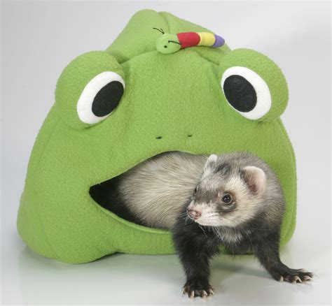 ferret bed marshall ferret cage leisure lodge bed tunnel toy frog ebay