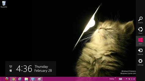 cute themes for windows 8 cute cats windows 7 and 8 theme ouo themes