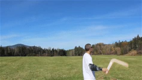 boomerang gif find on giphy