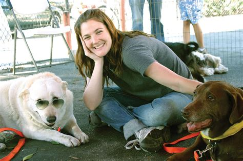 Drew Barrymore Supports Pet Adoption by Drew Barrymore Biography Net Worth Quotes Wiki