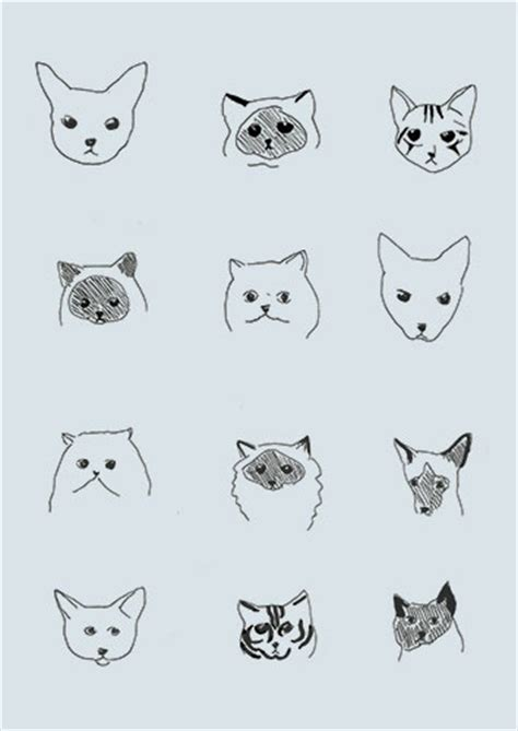 wallpaper cat illustration cat wallpaper cats and wallpapers on pinterest