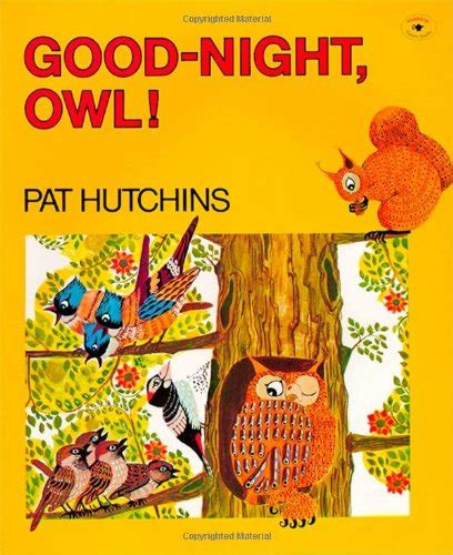 owl picture book owl book