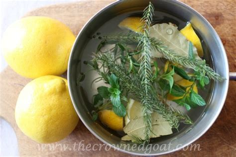 simmer pot recipes 10 citrus inspired simmer pot recipes the crowned goat