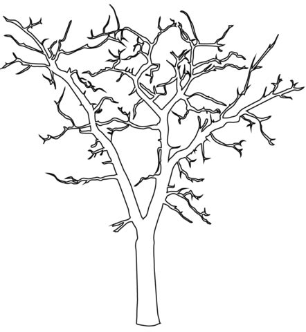 dead tree coloring page dead tree outline coloring page free printable coloring