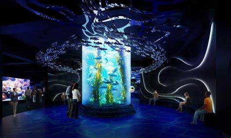 baby shark di neo soho jakarta aquarium preview showcasing the coral triangle