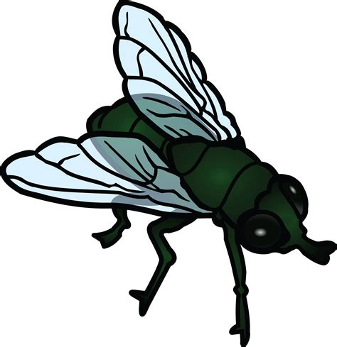 artwork clipart free clipart of a fly