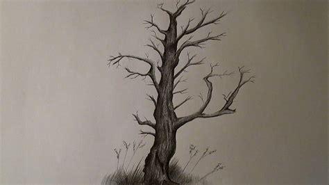imagenes realistas de un arbol c 243 mo dibujar un 225 rbol seco y sin hojas 225 rbol a l 225 piz hd