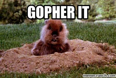 Gopher Meme - gopher it