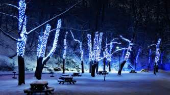 meaning tree lights wallpapers 2013 hd collection totalinfo90