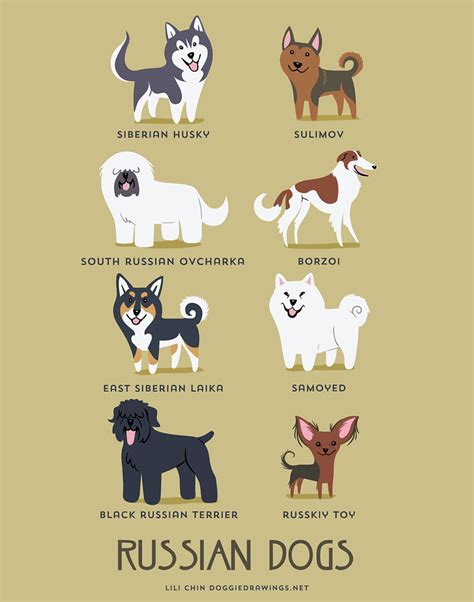 photos of naughty dogs around the world wallpapers pet o club the origins of 200 dog breeds explained in adorable posters