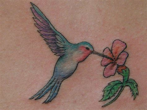 tattoo designs hummingbirds and flowers hummingbird tattoos 215442 0359 hummingbird designs