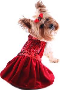 Christmas dog dress holiday pet dresses christmas puppy dress