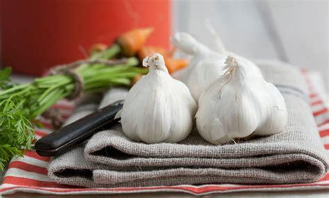alimenti sistema immunitario 10 alimenti che rinforzano il sistema immunitario