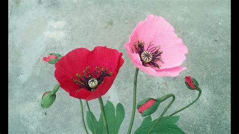 How To Make Poppies Out Of Tissue Paper - how to make poppy paper flower from crepe paper craft