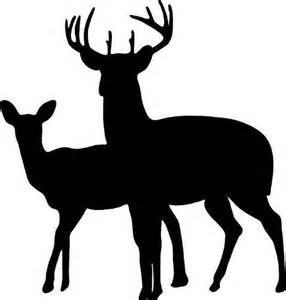 buck and buck inc 17 best images about deer ideas on