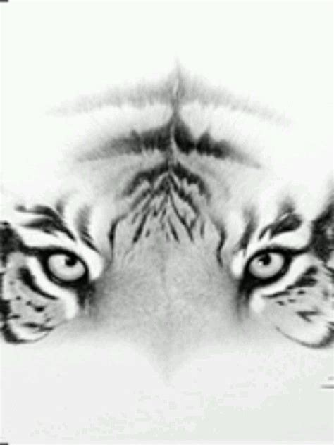 lost tiger tattoo 25 best tiger ideas on white