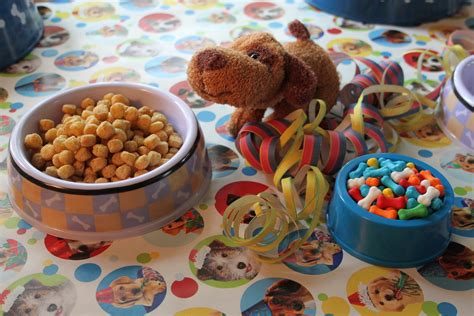 Puppy Themed Birthday Party Food Ideas   4k Wallpapers