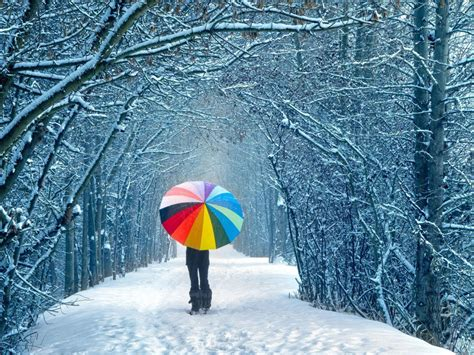 winter images winter winter wallpaper hq free download 3708