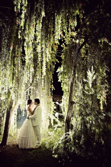 under a weeping willow tree beautiful beautiful