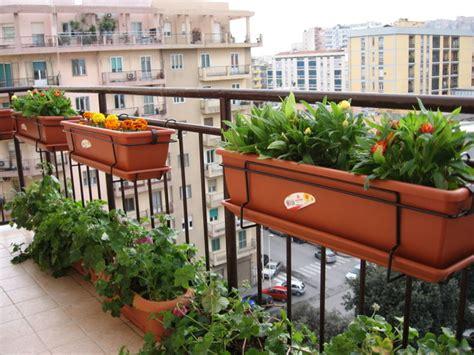 progettare un balcone fiorito un balcone quattro stagioni come organizzarsi per un