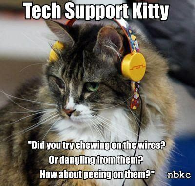 Inidia Cat 27 techmeme friday from the tech support trenches netapp