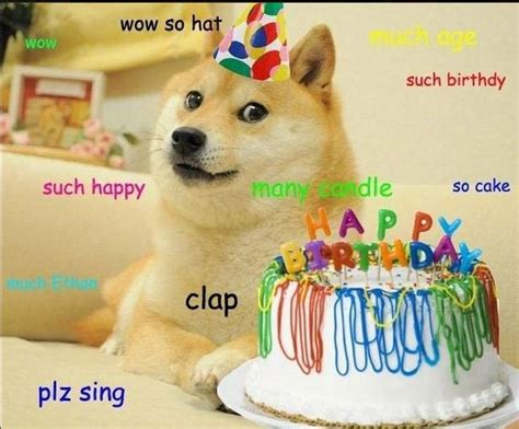 Birthday Cake Dog Meme - best 25 birthday meme dog ideas on pinterest happy