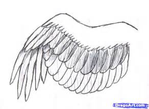 Bird Wings Outline by How To Draw A Simple Bird Wing Step By Step Birds Animals Free Drawing Tutorial