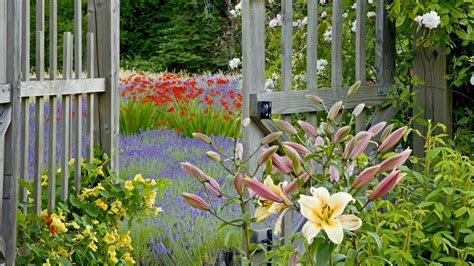 Flower Garden Fence G Wallpaper 1920x1080 176824 Flower Garden Fence