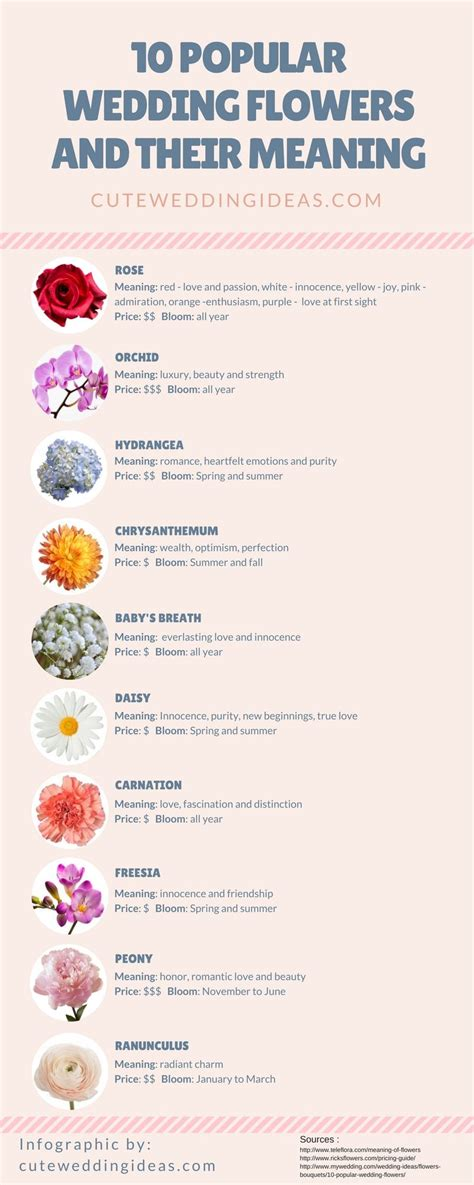 Types Of Flowers And Their Meanings by Unique Photos Of Types Of Flowers With Pictures And Their