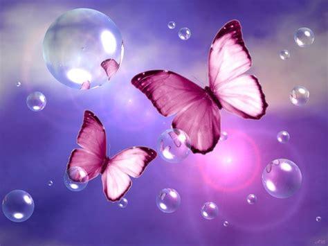 Butterfly Dreams by Butterfly Wallpaper Pink Butterfly Blue