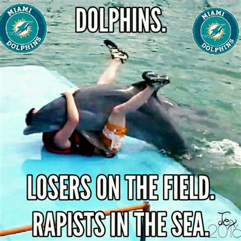 Miami Dolphins Memes - miami dolphins meme sports jokes pinterest miami