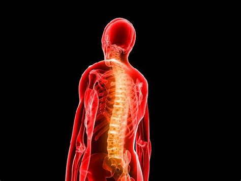 infiammazione colon alimentazione cibi e infiammazione quali evitare e come sostituirli per