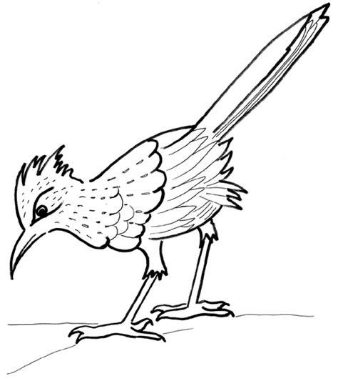 roadrunner bird coloring page best roadrunner clipart 7930 clipartion com