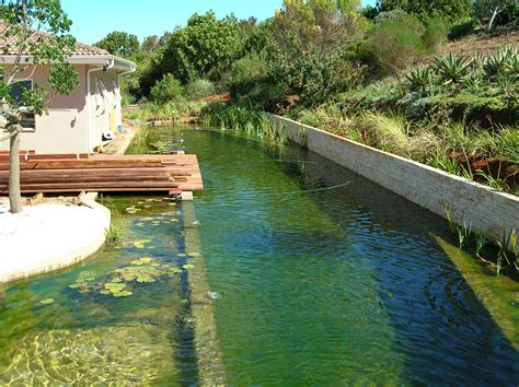 Natural Pool by Eco Friendly And Chlorine Free The True Potential Of