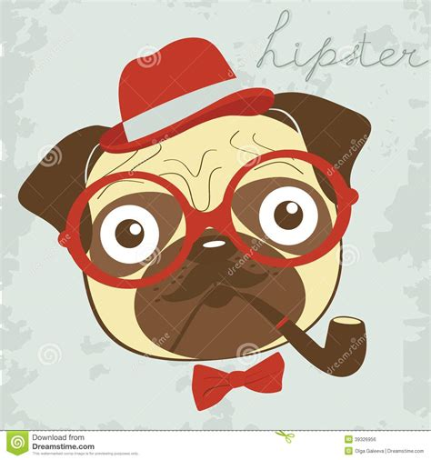 pug pipe pug pipe stock vector illustration of graphic