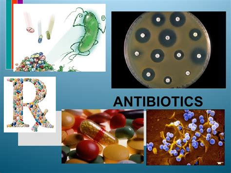 Antibiotics Ppt Antibiotics Ppt Templates Free