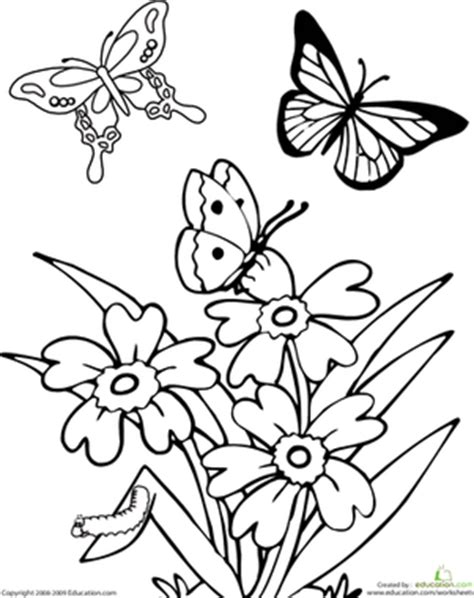 butterfly coloring page for kindergarten butterfly math worksheets for preschool butterfly