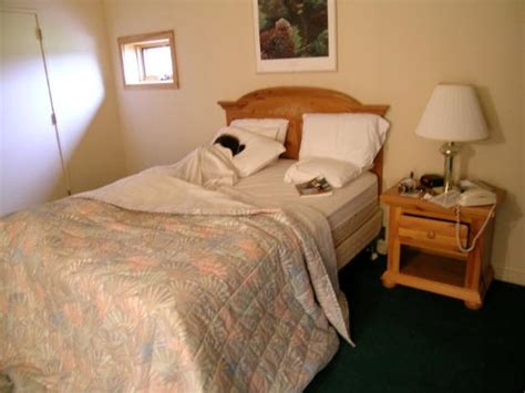 golf bedding cheesy bedding picture of tennanah lake golf and tennis club roscoe tripadvisor