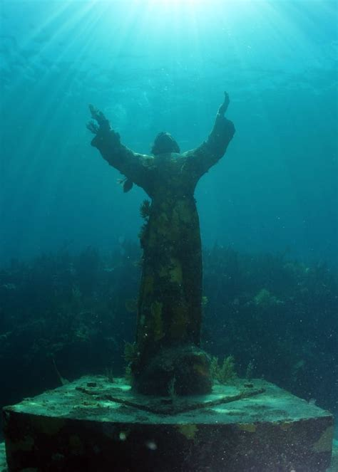 dive key largo divers scuba diving key largo fl united states
