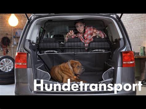 Hundetransport Auto by Autoboxen Transportbox F 252 Rs Auto