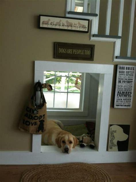 cool indoor dog houses homemydesign