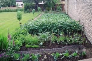 growing your own vegetables vegetable garden planting