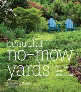 grass alternatives for backyards grass is not the only option for your lawn a book review