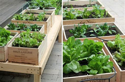 Wine Crate Planter by 17 Best Images About Garden Inspiration On