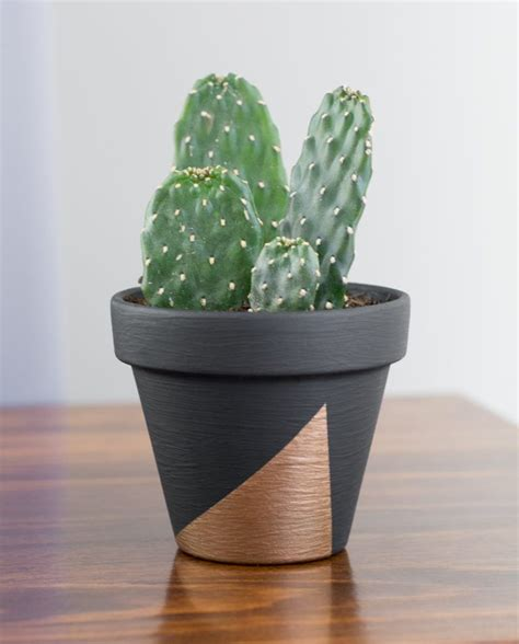 modern mini painted plant pots modern mini painted plant pots