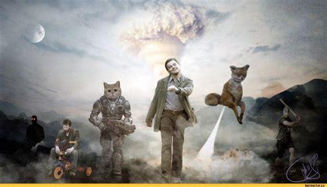 Stoned Fox Meme - 3ae jpeg